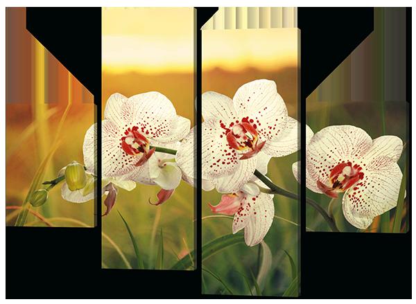 Модульная картина Орхидея на закате 126*93 см Код: W388M
