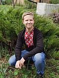 Трикотажна вишита футболка з довгим рукавом на підлітка, розмір лише S, 250 грн, фото 4