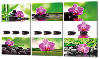 Картина на коже модульная Орхидеи камни коллаж 124*70 см Код: W276