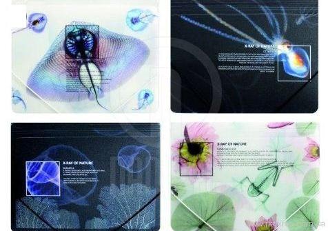 "Папка на резинке А4 Optima ""X-Ray"" № O30697 рисунок ассорти"