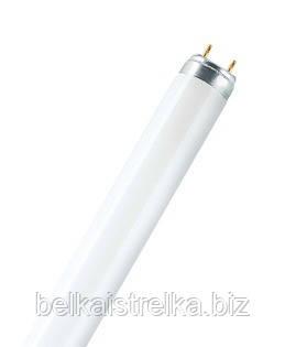 Лампа BIO-LUX 20 W