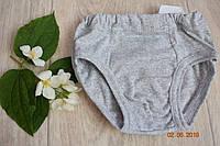 Трусики детские для мальчика хлопковые плавками серые (меланж)