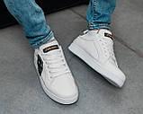 Кроссовки Dolce & Gabbana, кроссовки дольче габбана, кросівки Dolce & Gabbana, кросівки дольче габбана, фото 5