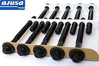 Болты головки блока цилиндров на Renault Trafic 2.0dCi / 2.5dCi (2003-2014) Ajusa (Испания) 81031600