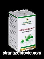 Березовий лист Betula pendula roth (betula verrucosa ehrh)