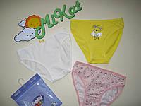 Труси Domi kids (3 шт.) для дівчинки (3-4 роки)