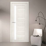 Двери  Омис Deco 09 Кортекс ( Cortex), дуб бьянко, фото 2