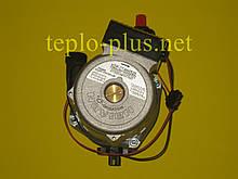 Насос циркуляційний з пробкою 30000469A (NAPU9GLPCT36) Navien Ace ATMO 13-24kw, TURBO 13-40kw, TURBO Coaxial