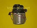 Насос циркуляционный с пробкой 30000469A (NAPU9GLPCT36) Navien Ace ATMO 13-24kw, TURBO 13-40kw, TURBO Coaxial, фото 6
