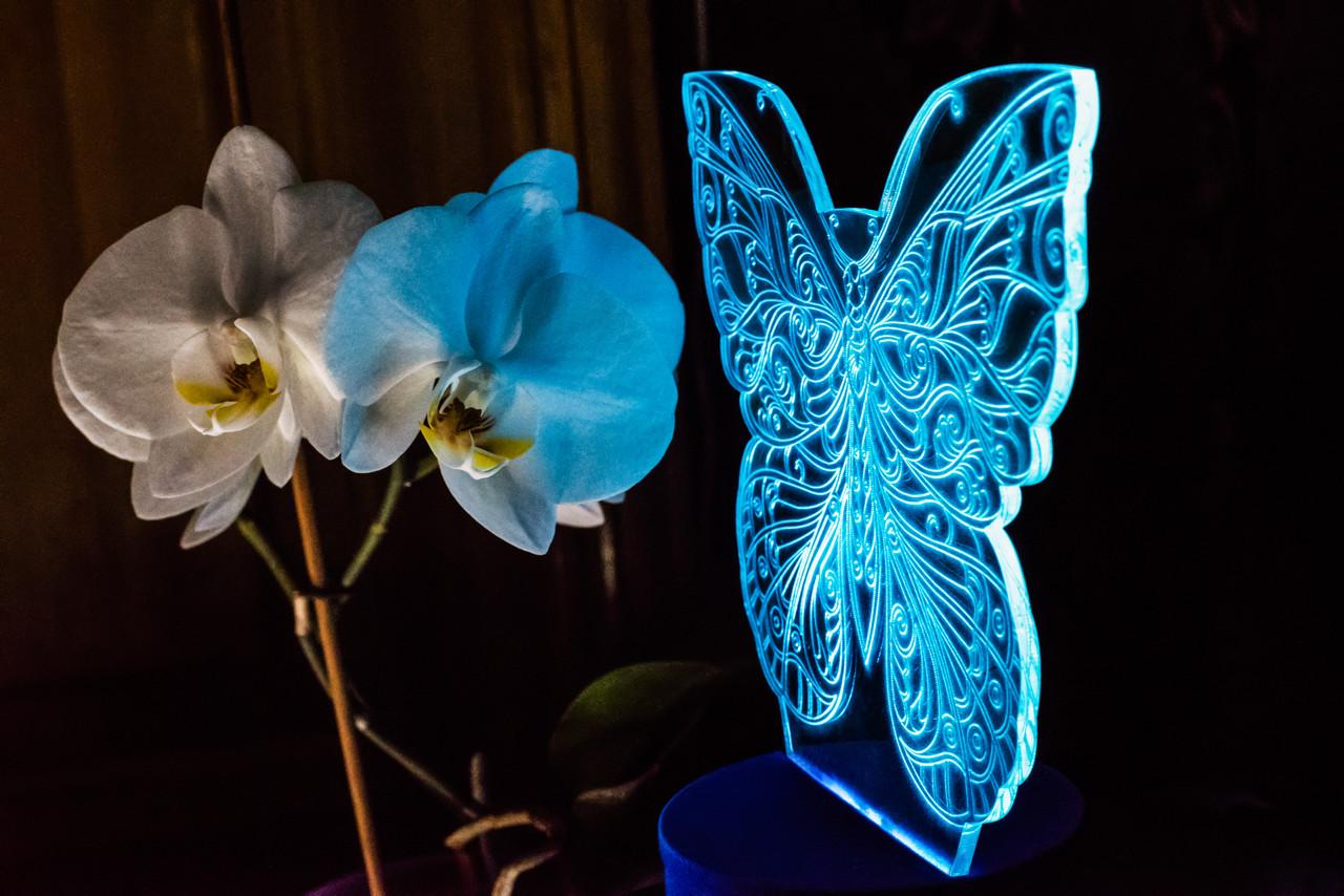 3d-світильник Метелик, 3д-нічник, кілька підсвічувань (на батарейці)