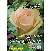 Роза  Ла Перла (La Perla) чайно-гибридная