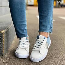 Кроссовки женские бело-голубые эко замша эко кожа кеды 38, фото 2