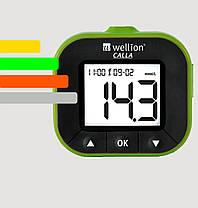 Глюкометр Wellion CALLA - Веллион Калла+100 тест-полосок, фото 3
