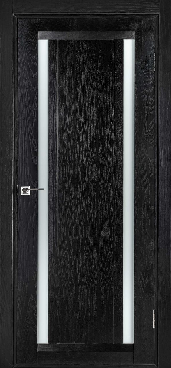 Межкомнатная дверь Дублин-М черный ясень ПО