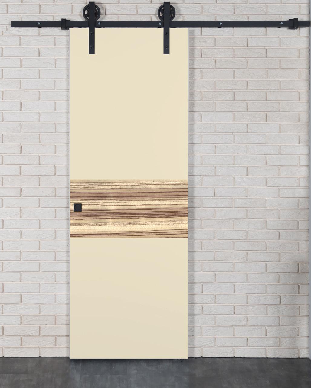 Межкомнатная дверь Флеш-Арт-HPL пластик зебрано