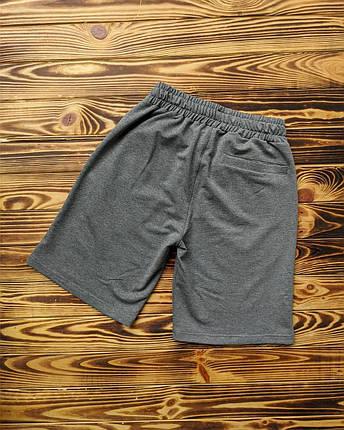 Мужские шорты NIKE (Реплика), фото 2