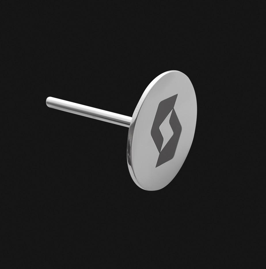 Педикюрный диск STALEKS PRO L (25 мм)