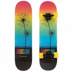 Скейтборд в сборе (роликовая доска) SK-1248-4