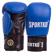 Перчатки боксерские профессиональные ФБУ SPORTKO кожаные UR SP-4705 ПК1 (р-р 10-12oz, цвета в ассортименте), фото 2