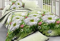 Комплект постельного белья Семейный Бязь Голд Люкс 100% хлопок