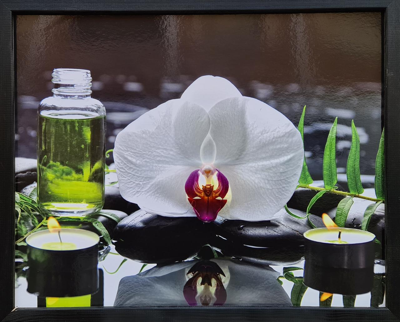 "Фотокартина в деревянной раме ""Flower 7"", 40х50 см"