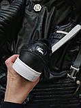 Мужская фирменная обувь Lacoste Black/White, фото 3