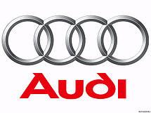 Защита картера двигателя Audi