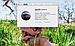 MacBook Pro Retina MJLT2 Mid 2015 16Gb AMD Radeon R9 M370X SSD 512, фото 2