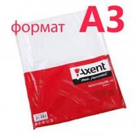Файл для документов, вертикальный, глянцевий А3 +40мк 100 шт. Axent № 2003-00