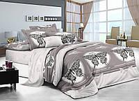 Комплект постельного белья двуспальный Мотыльки Comfort CottonTwill (сатин)