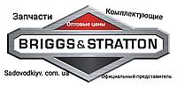 Запчасти Briggs & Stratton на двигателя культиватора/мотоблока/генераторов (Оптовые цены)