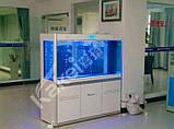 Аквариум Cleair AAZ-1000 на 295 л., фото 2
