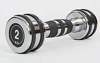 Гантель хромована Record TA-8232-2 (1х2,кг) (1шт, метал хромований)