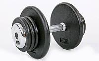 Гантель цілісна професійна сталева RECORD (1шт) TA-7231-20 20кг (сталь, хромована сталь, вага 20кг)