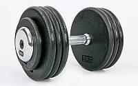 Гантель цельная профессиональная стальная RECORD (1шт) TA-7231-35 35кг (сталь, сталь хромированная, вес 35кг)