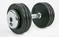 Гантель цілісна професійна сталева RECORD (1шт) TA-7231-17_5 17,5 кг (сталь, хромована сталь, вага 17,5 кг)