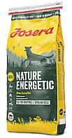 Сухий корм Josera Nature Energetic для дорослих активних собак середніх та великих порід, птах 15 кг
