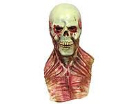 Маска Зомби из латекса 1