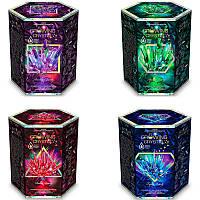 Набор для проведения опытов Growing crystal Данко Тойс рус SKL11-221310