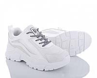 Женские бело-серые кроссовки из кожзама весна-осень 38 р. - 24 см BR-S 1175728143