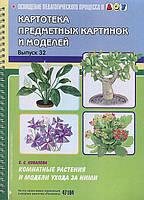 Елена Семеновна Ковалева Комнатные растения и модели ухода за ними
