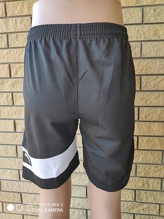 Шорты унисекс трикотажые брендовые, есть большие размеры реплика PUMA, фото 2