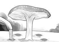 Профилактика при появлении грибов на газоне