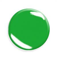 Гель-лак для  ногтей  SALON PROFESSIONAL (CША) № 79 цвет - зеленый  пастельный.