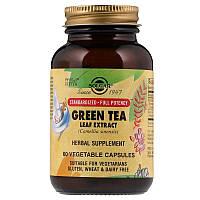 Solgar, Экстракт листьев зеленого чая, 60 растительных капсул