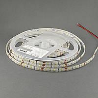 Светодиодная лента ESTAR 3528/60 4,8Вт 12В 3800-4300К Нейтральный белый IP65 премиум, фото 1