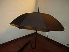 Зонт трость на 10 спиц