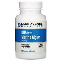 Lake Avenue Nutrition, ДГК из морских водорослей, растительные омега, 200мг, 60растительных мягких таблеток
