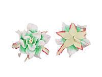 Гардения средняя двухцветная - Бело-зеленая, размер 4-5 см, 1 шт
