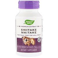 Nature's Way, Shiitake Maitake, Грифола курчавая, Шиитаке Майтаке, 250 мг, 60 капсул